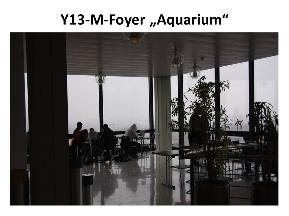 """Y13-M-Foyer """"Aquarium"""