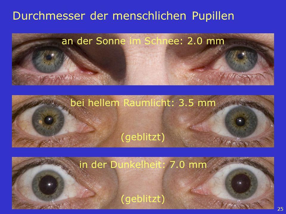 Durchmesser der menschlichen Pupillen