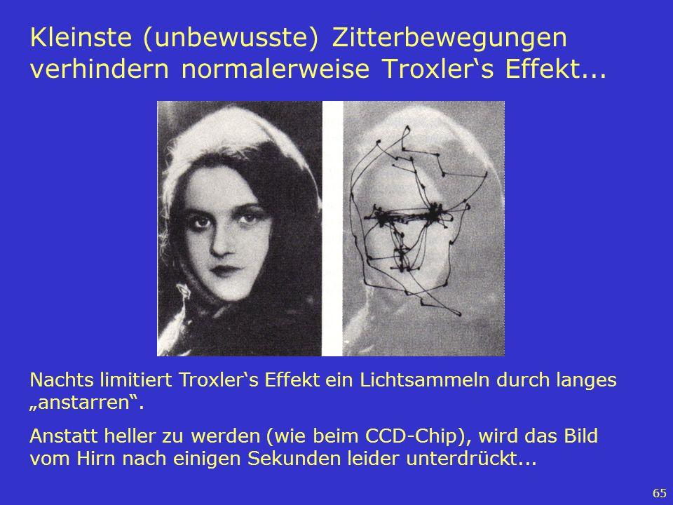 Kleinste (unbewusste) Zitterbewegungen verhindern normalerweise Troxler's Effekt...