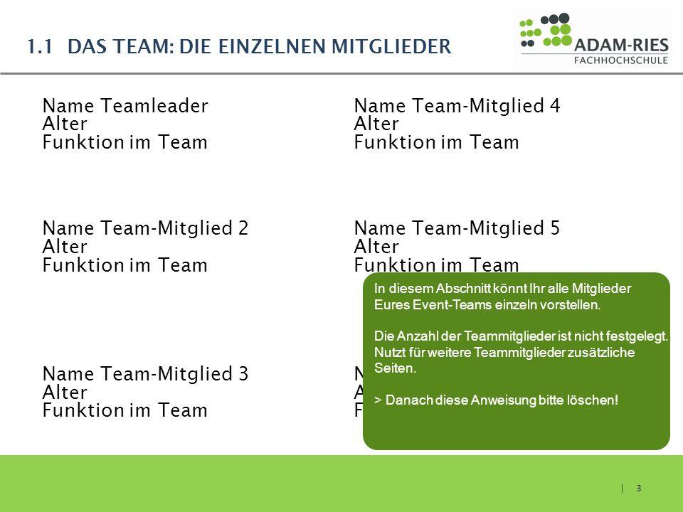 1.1 Das Team: Die einzelnen Mitglieder