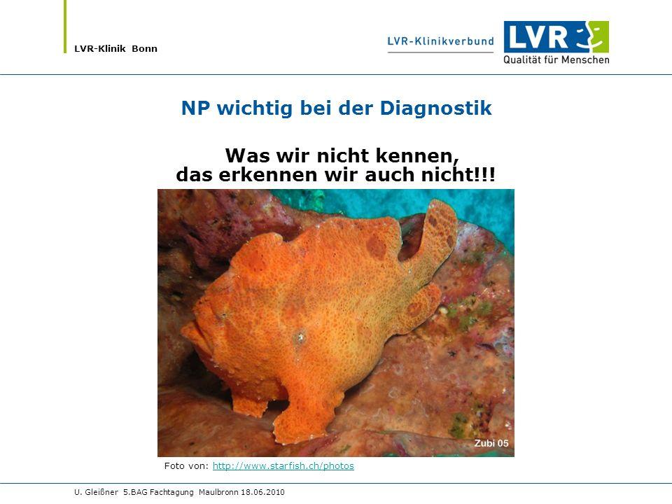NP wichtig bei der Diagnostik