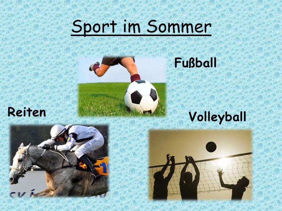 Sport im Sommer Fußball Reiten Volleyball