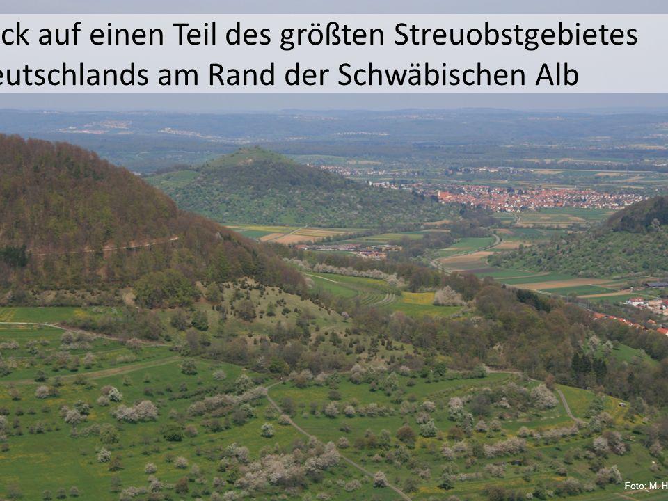 Blick auf einen Teil des größten Streuobstgebietes Deutschlands am Rand der Schwäbischen Alb