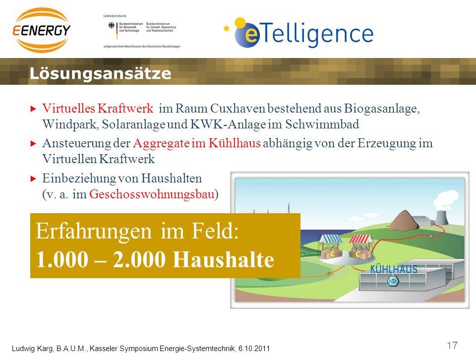 Erfahrungen im Feld: 1.000 – 2.000 Haushalte Lösungsansätze