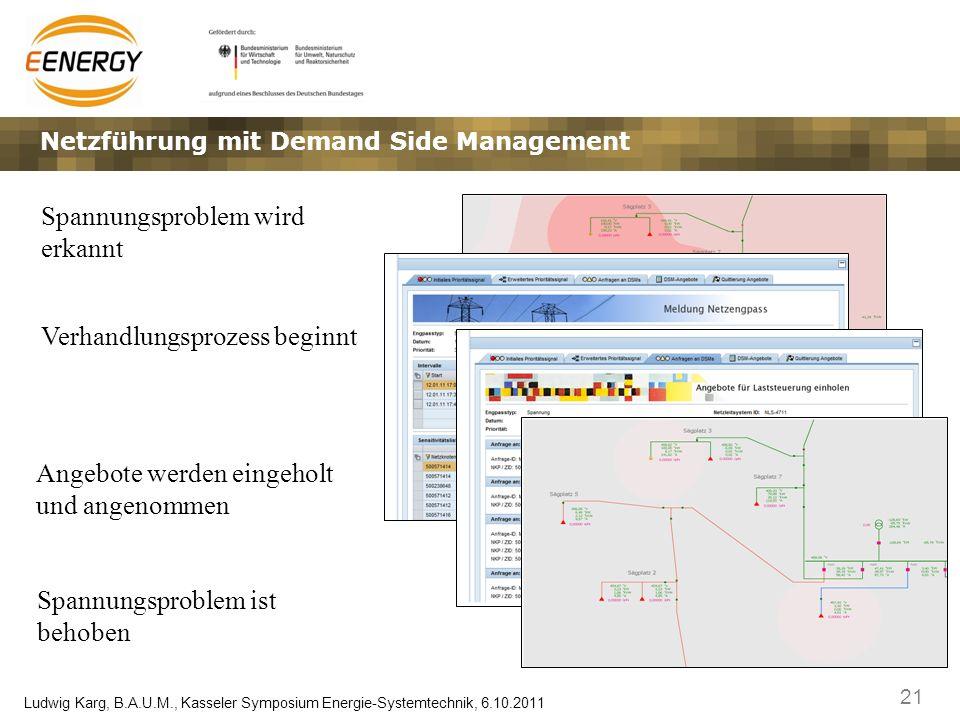 Netzführung mit Demand Side Management