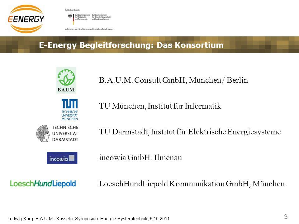 E-Energy Begleitforschung: Das Konsortium