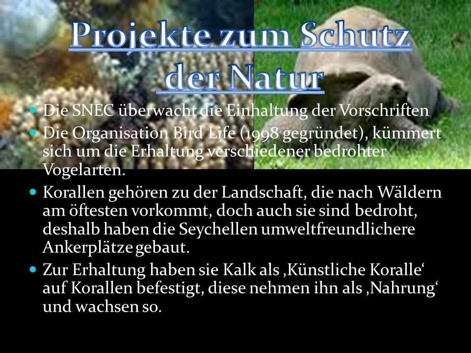 Projekte zum Schutz der Natur