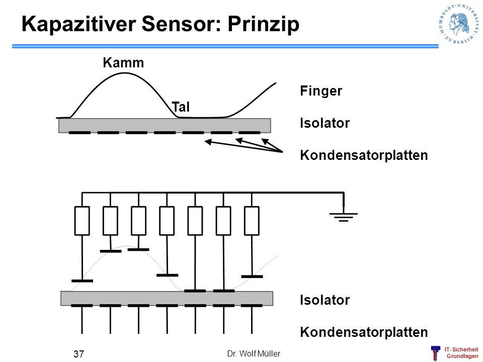 Kapazitiver Sensor: Prinzip