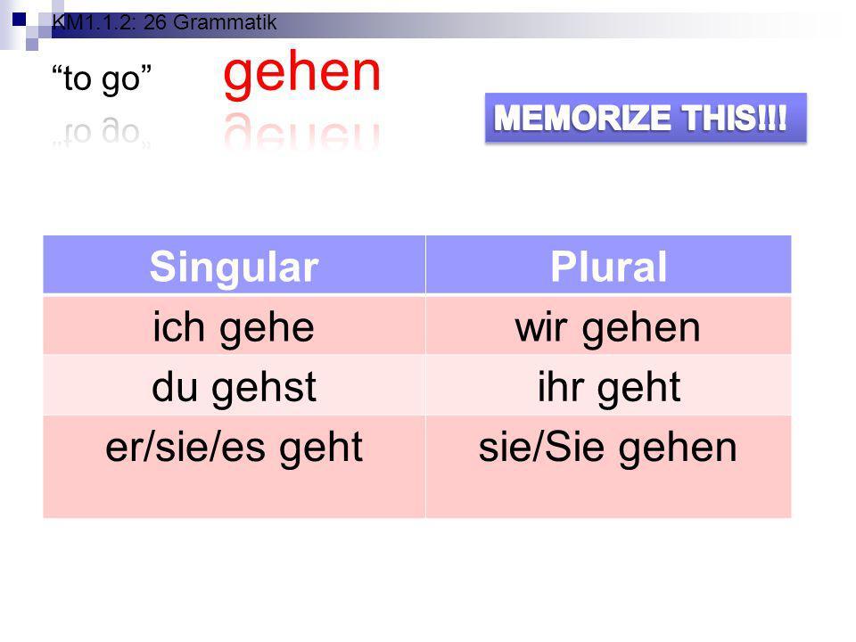 KM1.1.2: 26 Grammatik to go gehen
