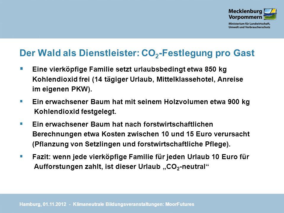 Der Wald als Dienstleister: CO2-Festlegung pro Gast