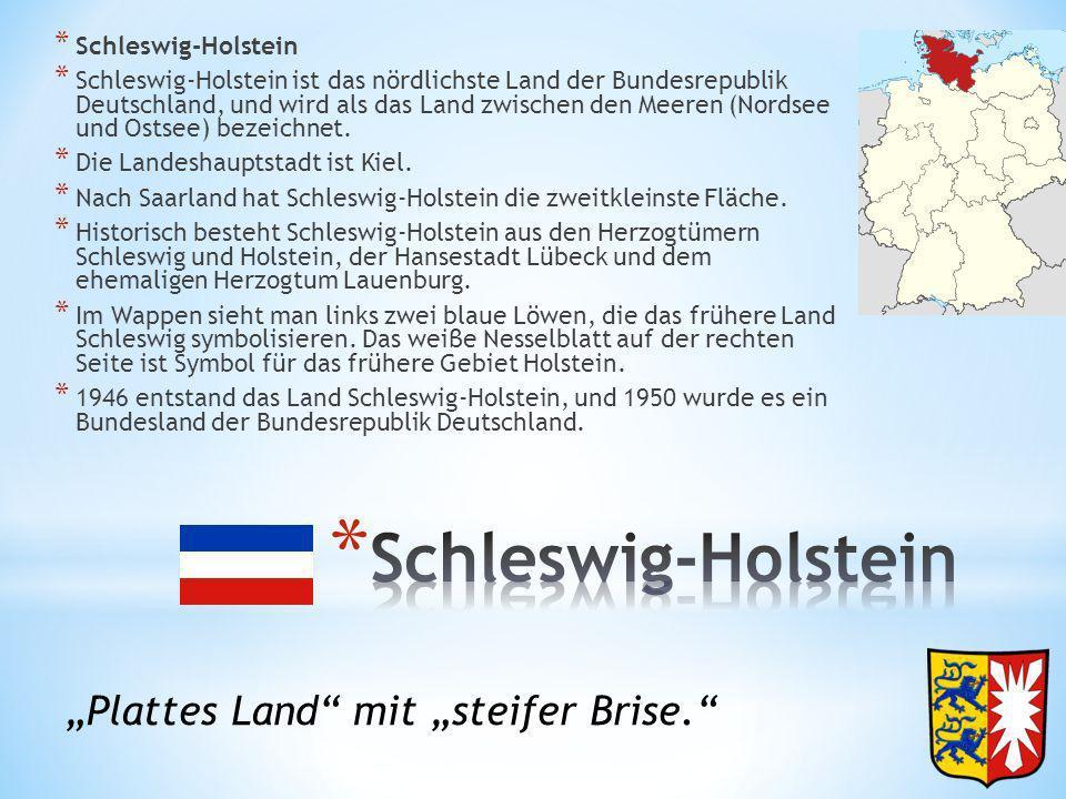 """Schleswig-Holstein """"Plattes Land mit """"steifer Brise."""