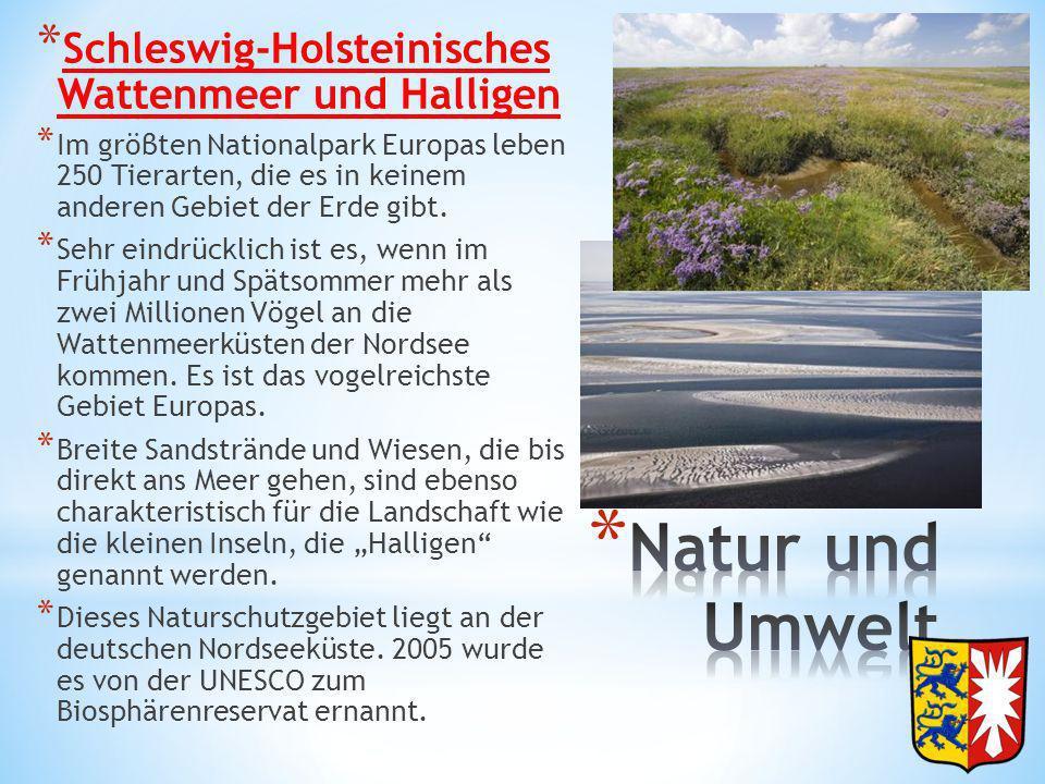 Natur und Umwelt Schleswig-Holsteinisches Wattenmeer und Halligen
