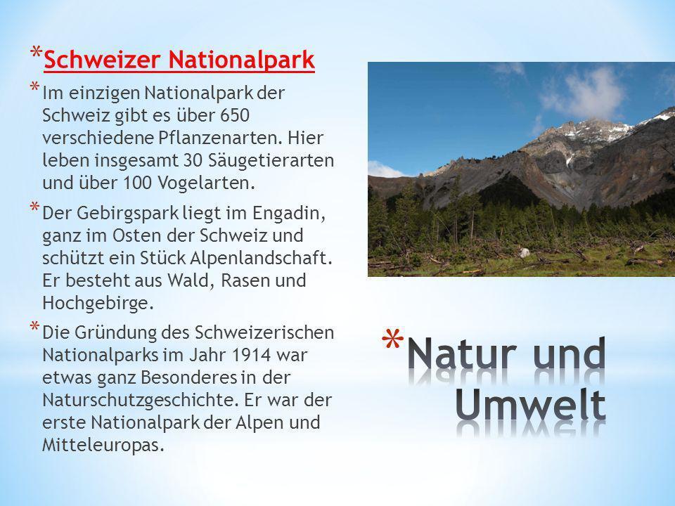 Natur und Umwelt Schweizer Nationalpark