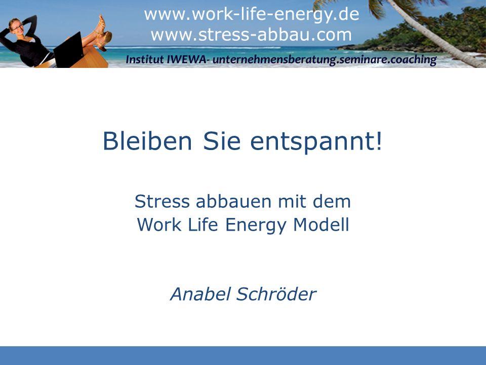 Work Life Energy Modell