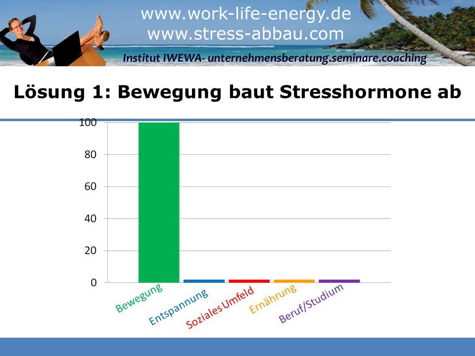 Lösung 1: Bewegung baut Stresshormone ab