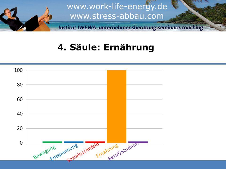 4. Säule: Ernährung Beruf/Studium Entspannung Soziales Umfeld
