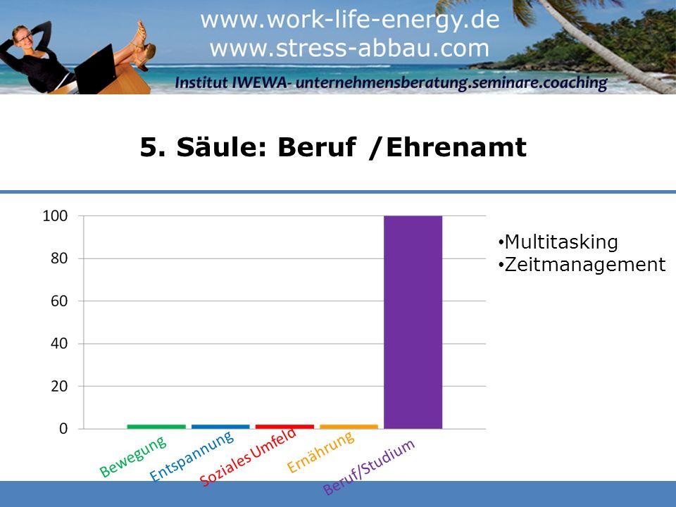 5. Säule: Beruf /Ehrenamt