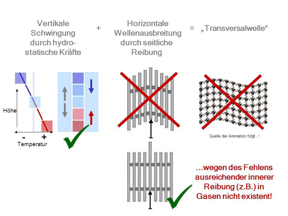   - + Vertikale Schwingung Horizontale Wellenausbreitung + =