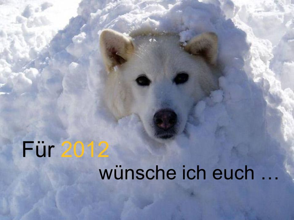 Für 2012 wünsche ich euch …