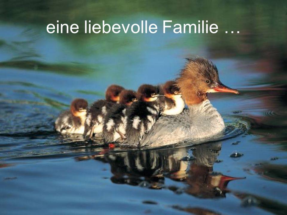eine liebevolle Familie …