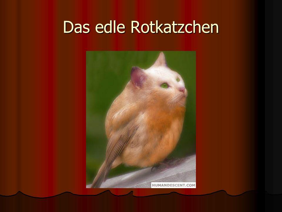 Das edle Rotkatzchen