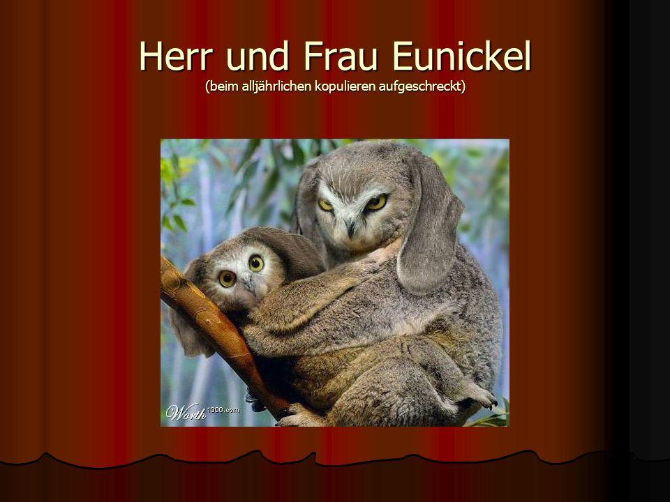 Herr und Frau Eunickel (beim alljährlichen kopulieren aufgeschreckt)