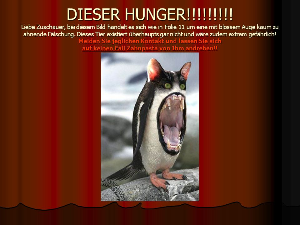 DIESER HUNGER!!!!!!!!.