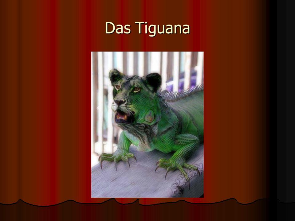 Das Tiguana
