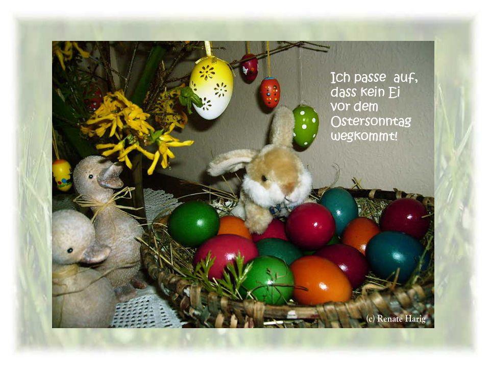 Ich passe auf, dass kein Ei vor dem Ostersonntag wegkommt!