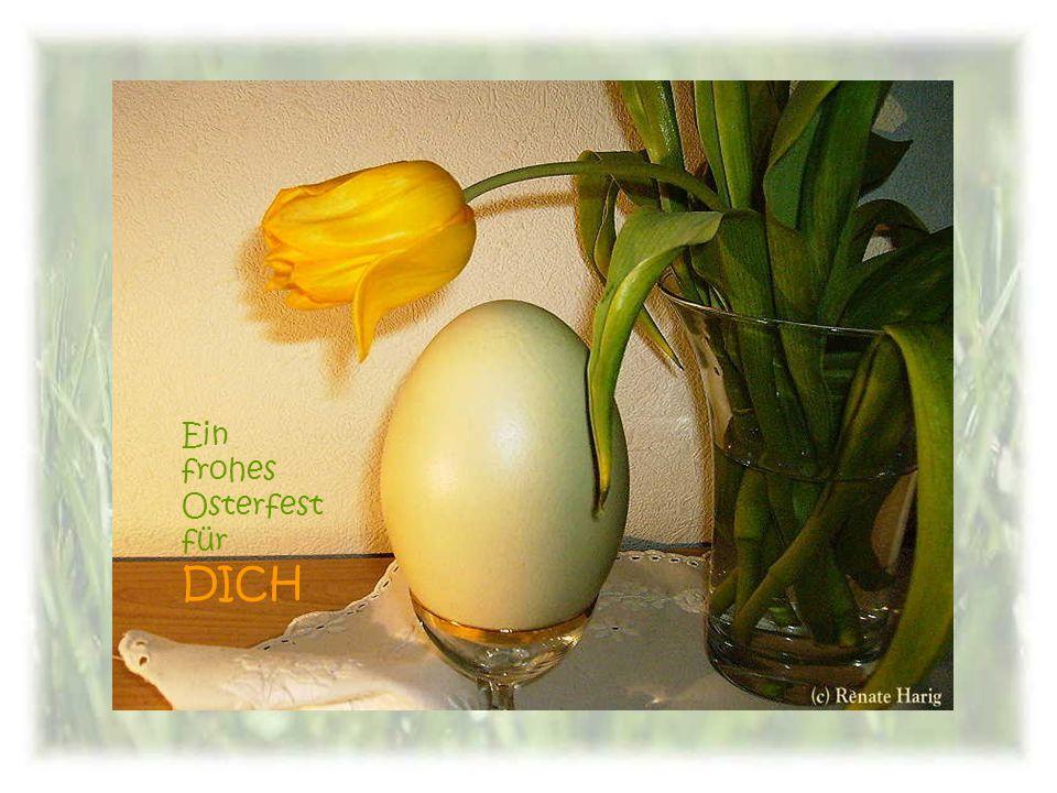 Ein frohes Osterfest für DICH