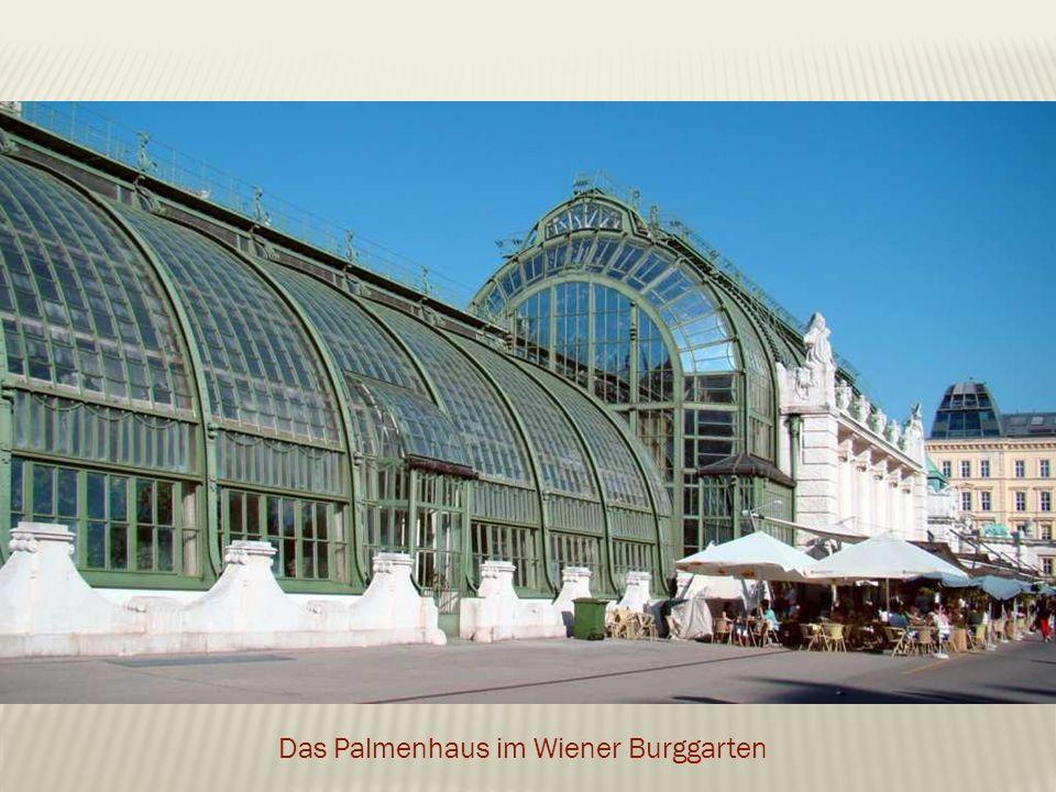 Das Palmenhaus im Wiener Burggarten