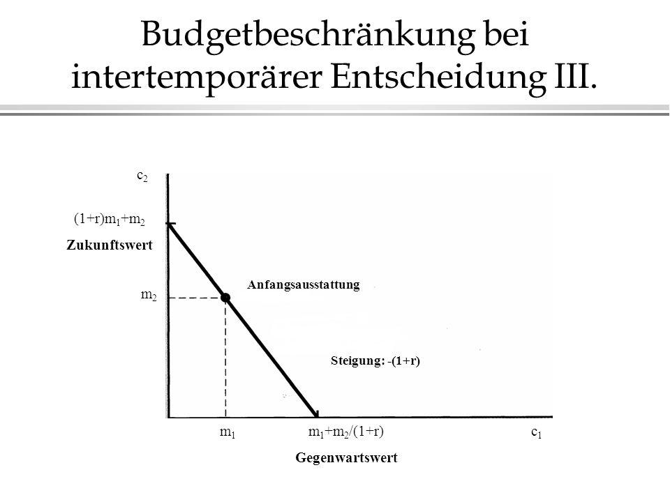 Budgetbeschränkung bei intertemporärer Entscheidung III.