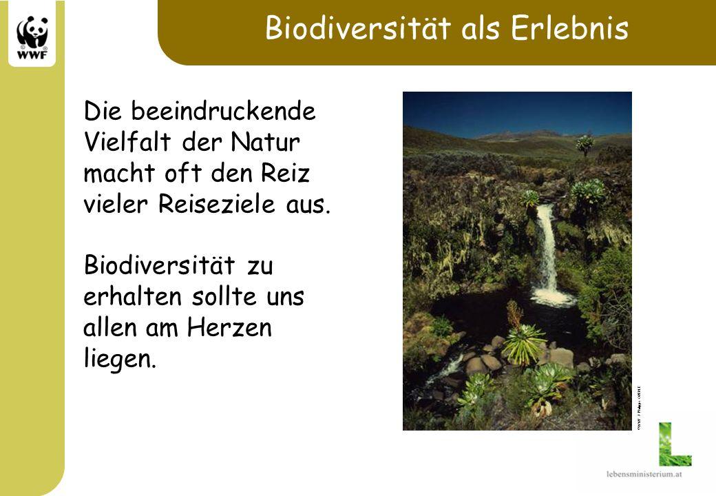Biodiversität als Erlebnis