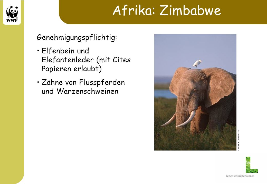 Afrika: Zimbabwe Genehmigungspflichtig: