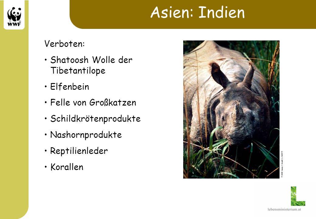 Asien: Indien Verboten: Shatoosh Wolle der Tibetantilope Elfenbein