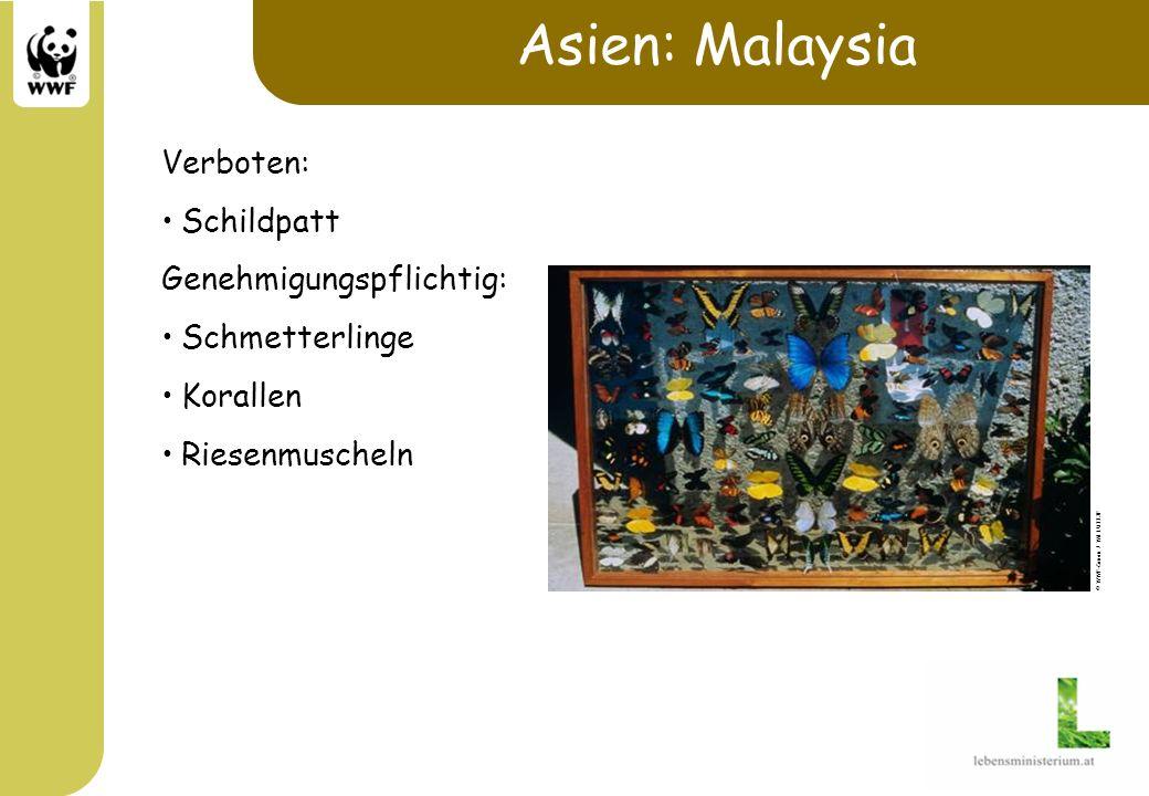 Asien: Malaysia Verboten: Schildpatt Genehmigungspflichtig: