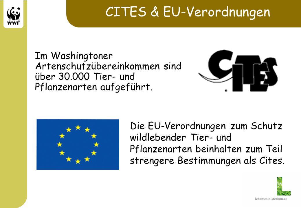 CITES & EU-Verordnungen