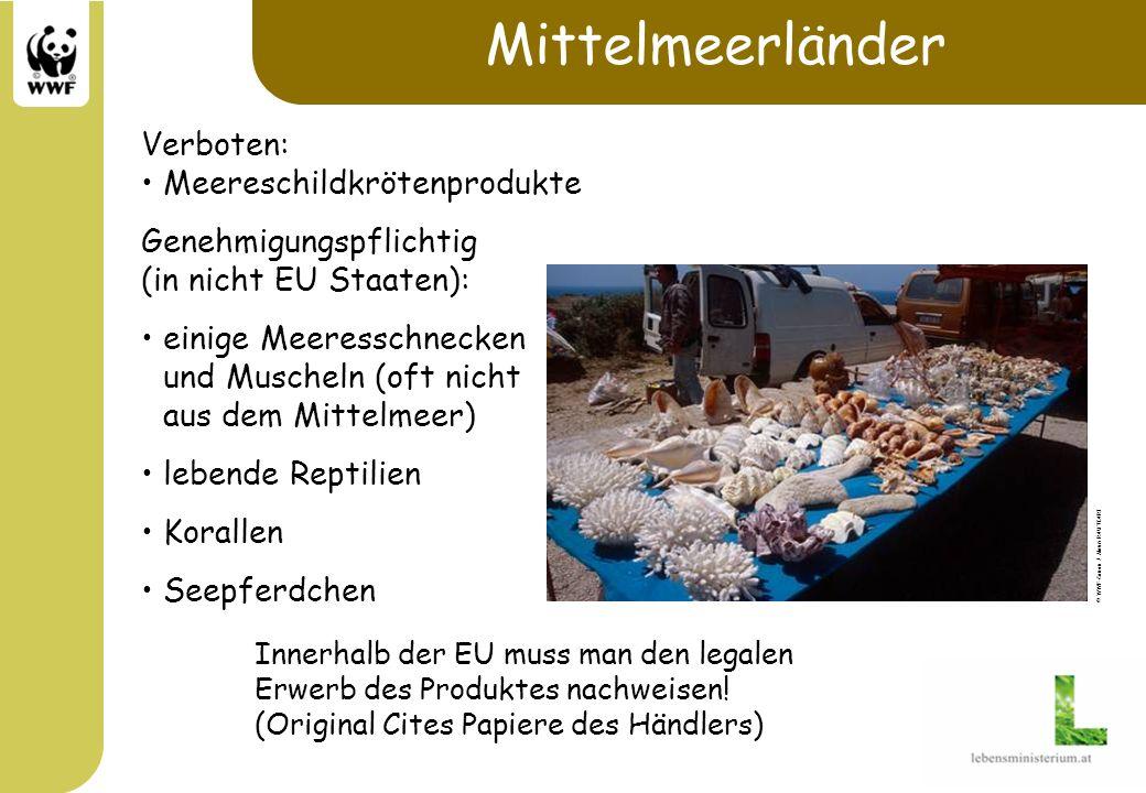 Mittelmeerländer Verboten: Meereschildkrötenprodukte
