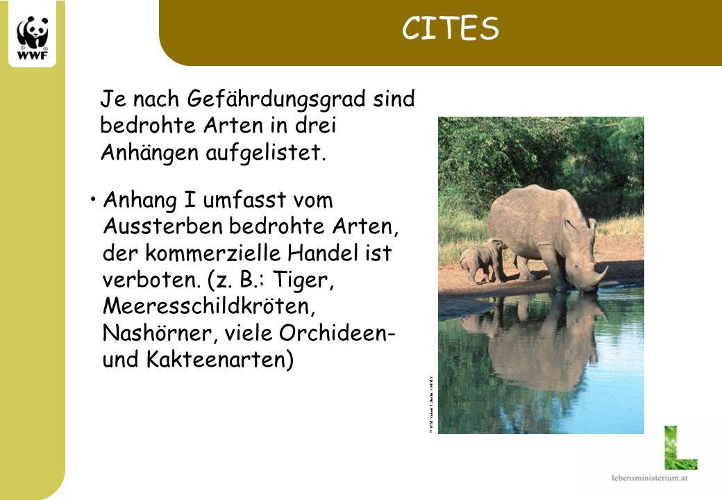 CITES Je nach Gefährdungsgrad sind bedrohte Arten in drei