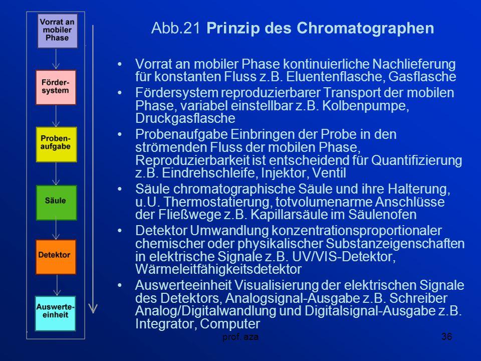 Abb.21 Prinzip des Chromatographen