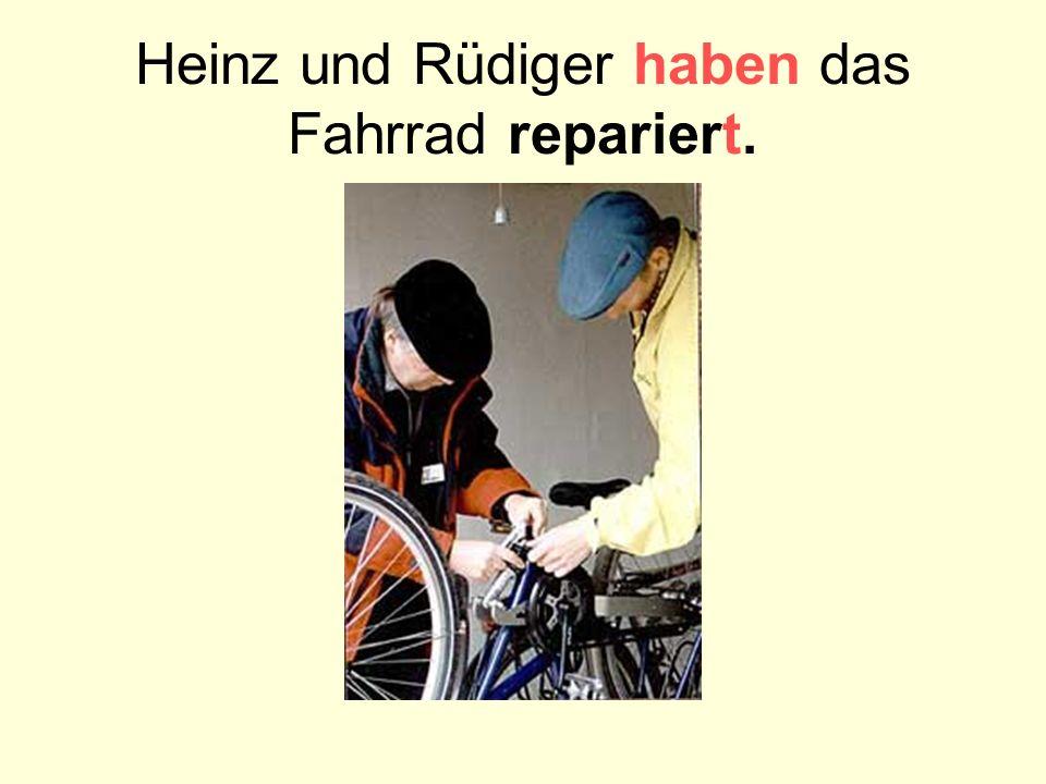 Heinz und Rüdiger haben das Fahrrad repariert.