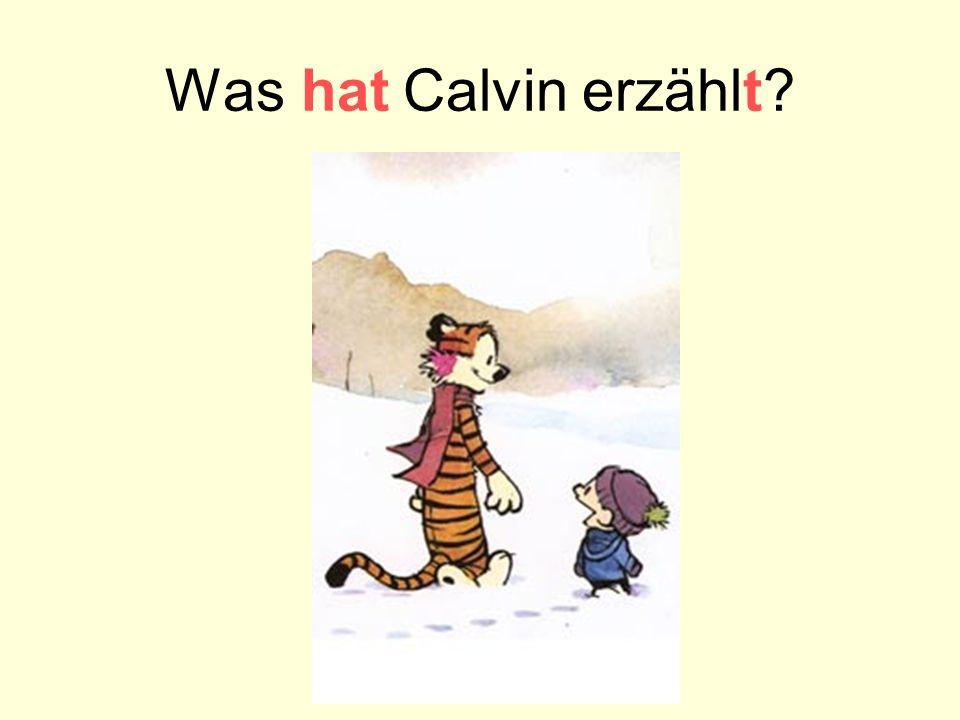 Was hat Calvin erzählt