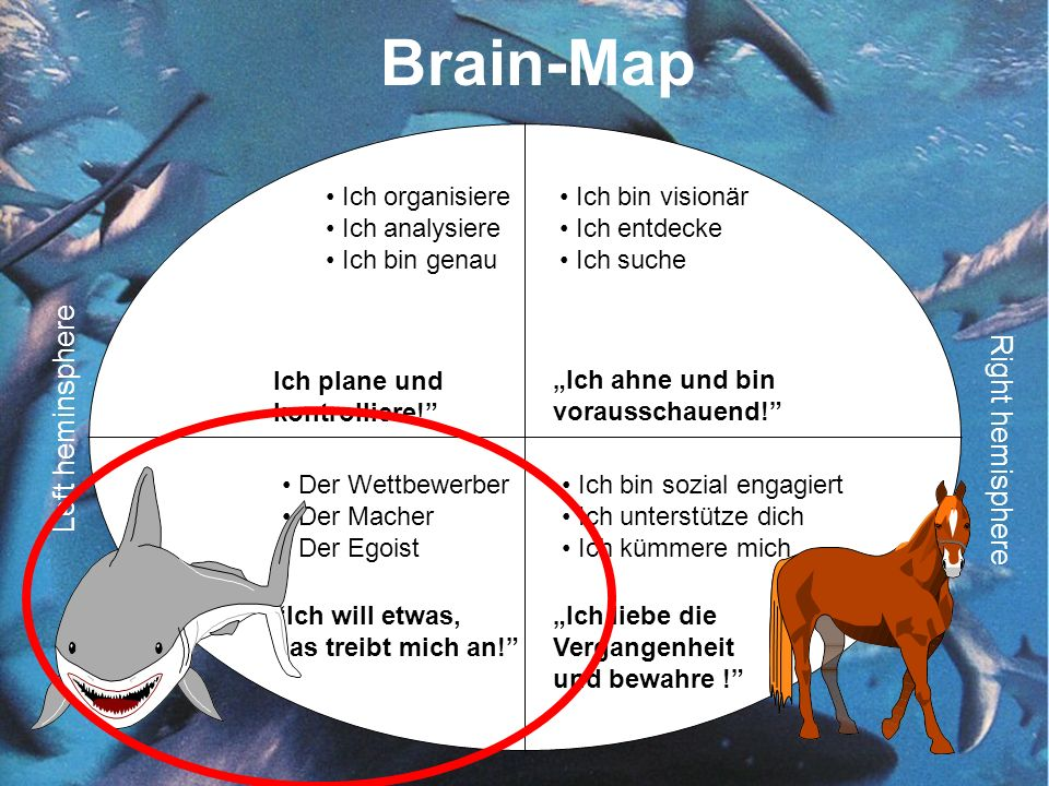 Brain-Map Left heminsphere Right hemisphere Ich organisiere