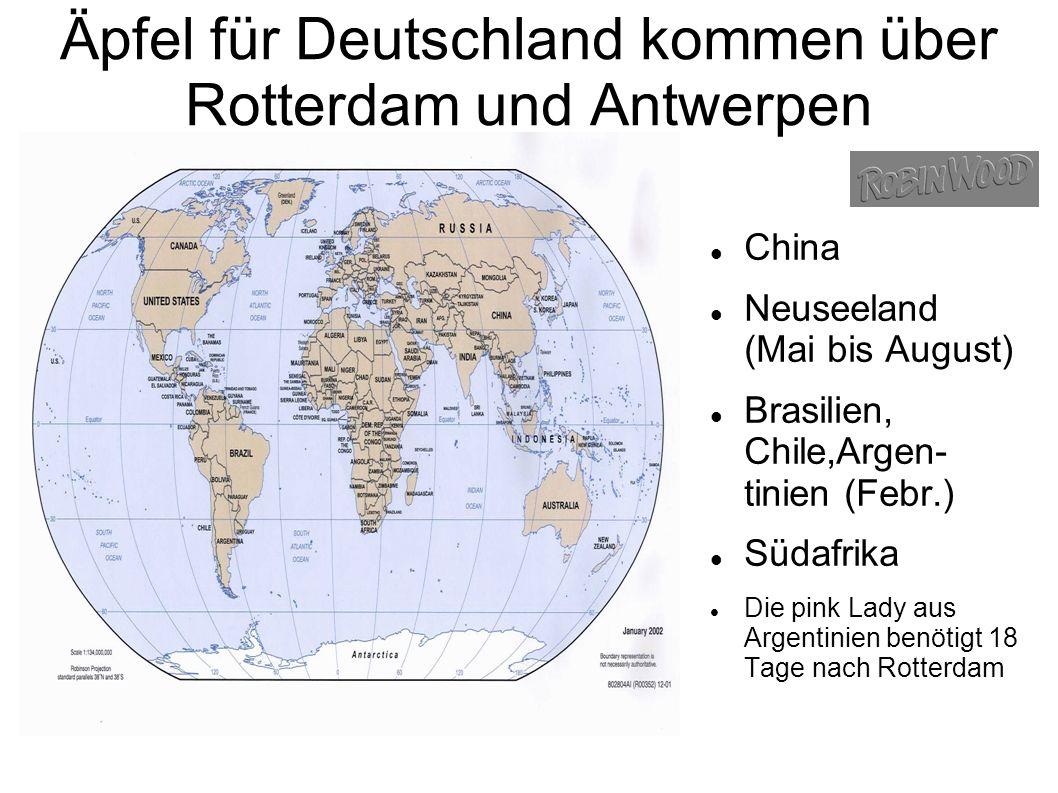 Äpfel für Deutschland kommen über Rotterdam und Antwerpen