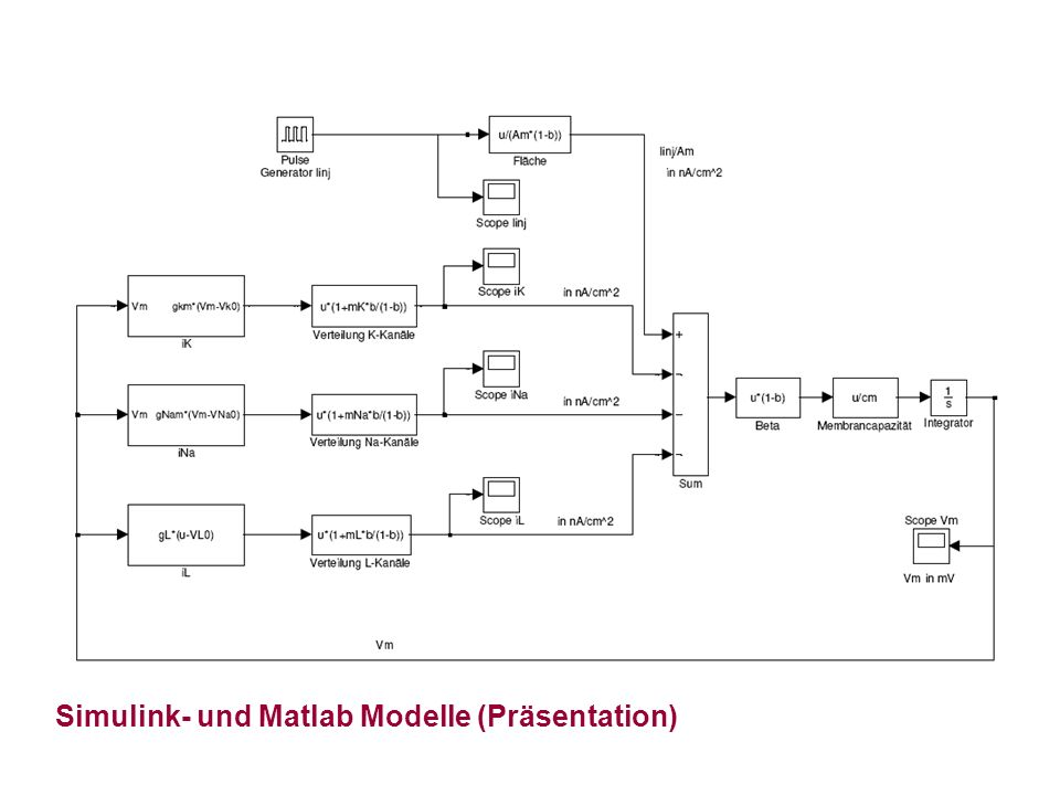 Simulink- und Matlab Modelle (Präsentation)