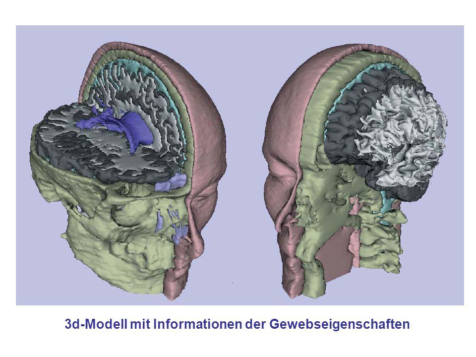 3d-Modell mit Informationen der Gewebseigenschaften
