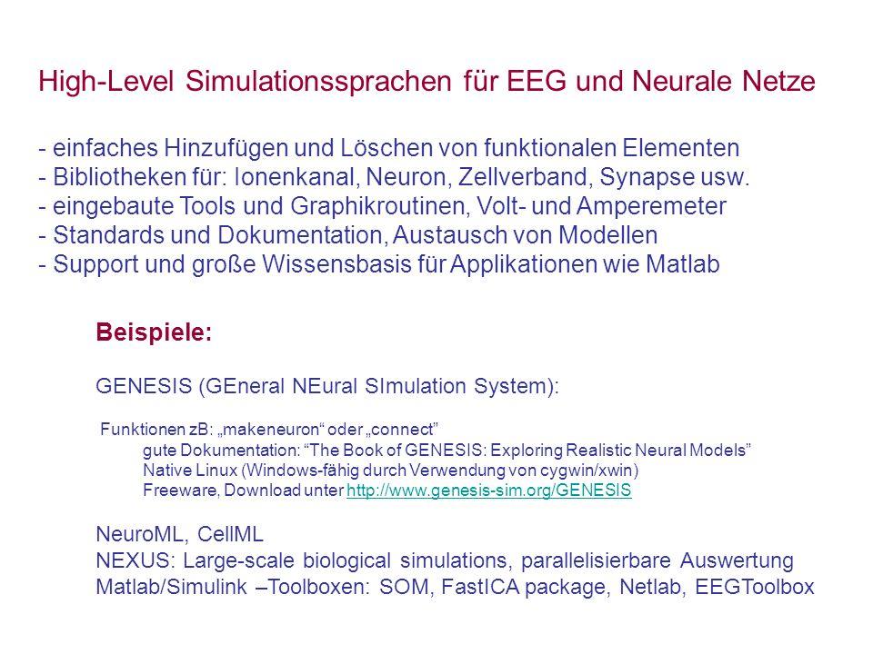 High-Level Simulationssprachen für EEG und Neurale Netze