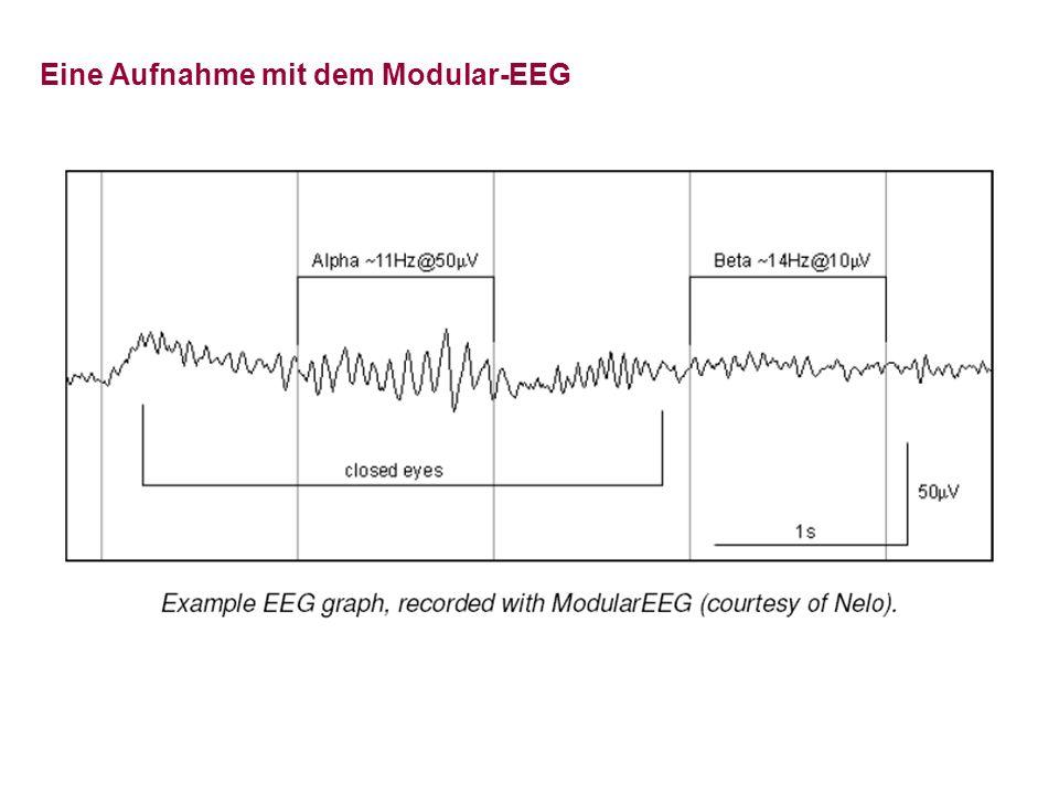 Eine Aufnahme mit dem Modular-EEG
