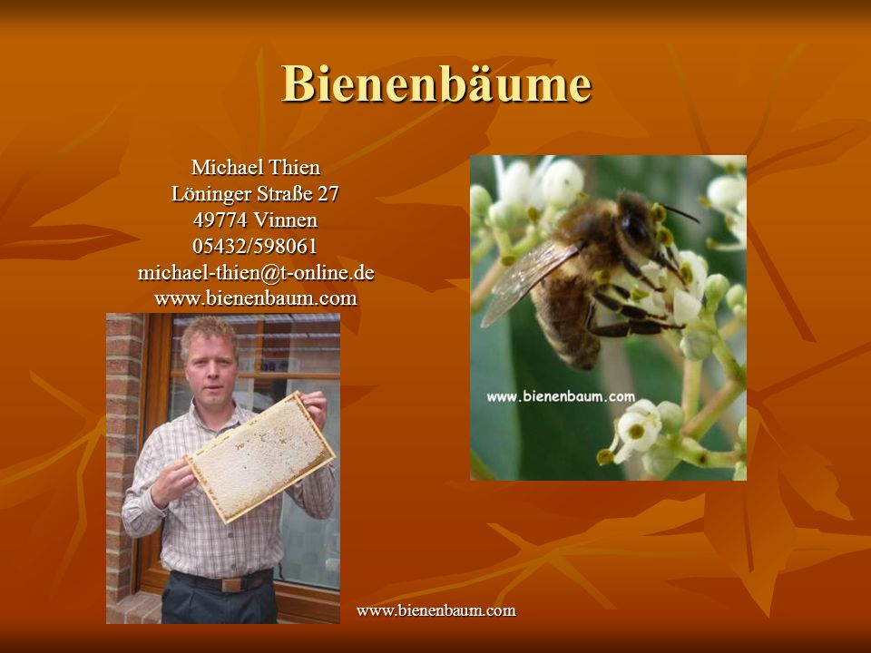 Bienenbäume Michael Thien Löninger Straße 27 49774 Vinnen 05432/598061