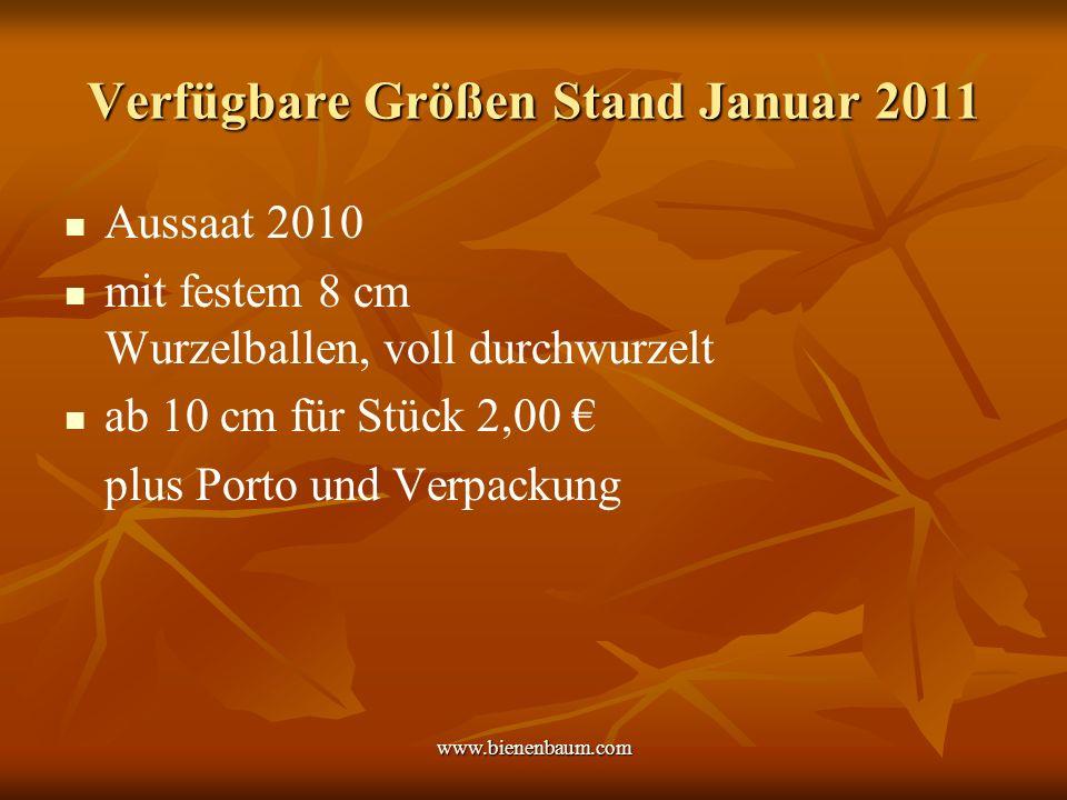 Verfügbare Größen Stand Januar 2011